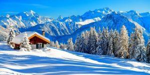 ЗИМА Горобчик зажурився на тополі, Пушинки снігу ловить, ніби в сні…