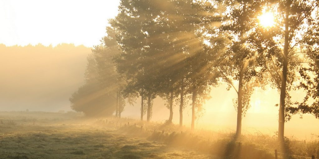 Утро (Детский стишок) Из лазурного дворца, В блеске яркого венца Вышло солнце красное, Светлое, прекрасное…