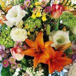 Собирайте розы, лилии и гвоздики (Восхитительные Божественные обетования) Однажды знаменитый садовник пригласил в свой сад двух девушек. Сад был прекрасен! Вдоль ухоженных аллей пышно цвели розы, лилии и гвоздики.