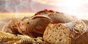 Не хлібом самим житиме людина Частина 4. Спокусник